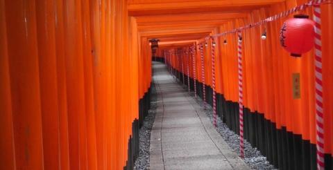 Torii Pathway July 2012